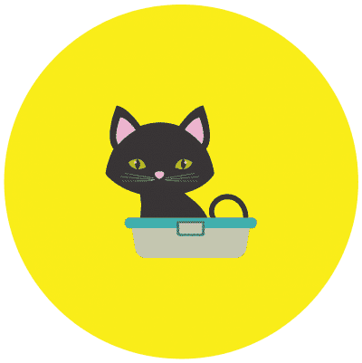 Cat bathing yellow background