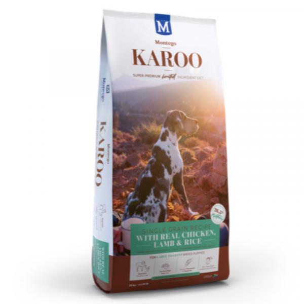 Montego Karoo large breed puppy