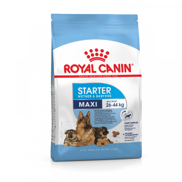Royal Canin Maxi Starter dog Food