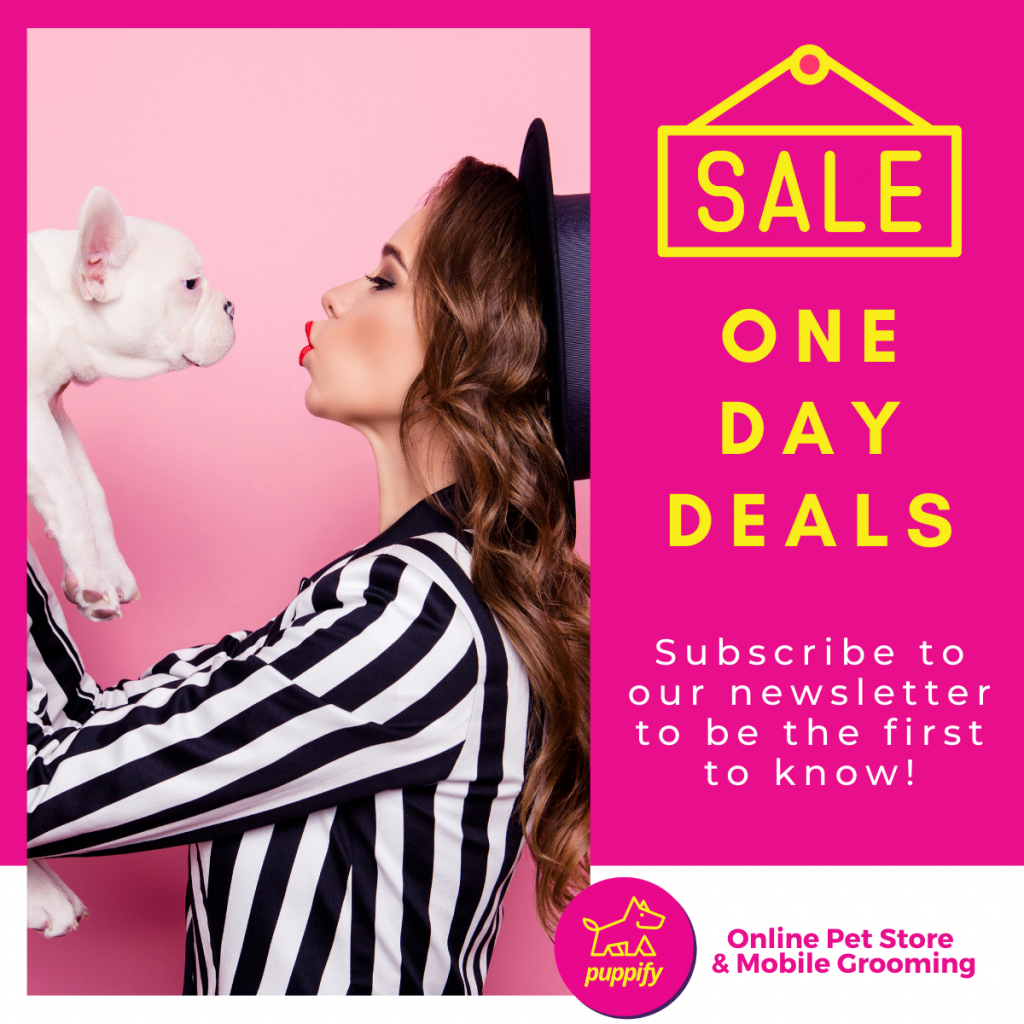 One day deals subscribe