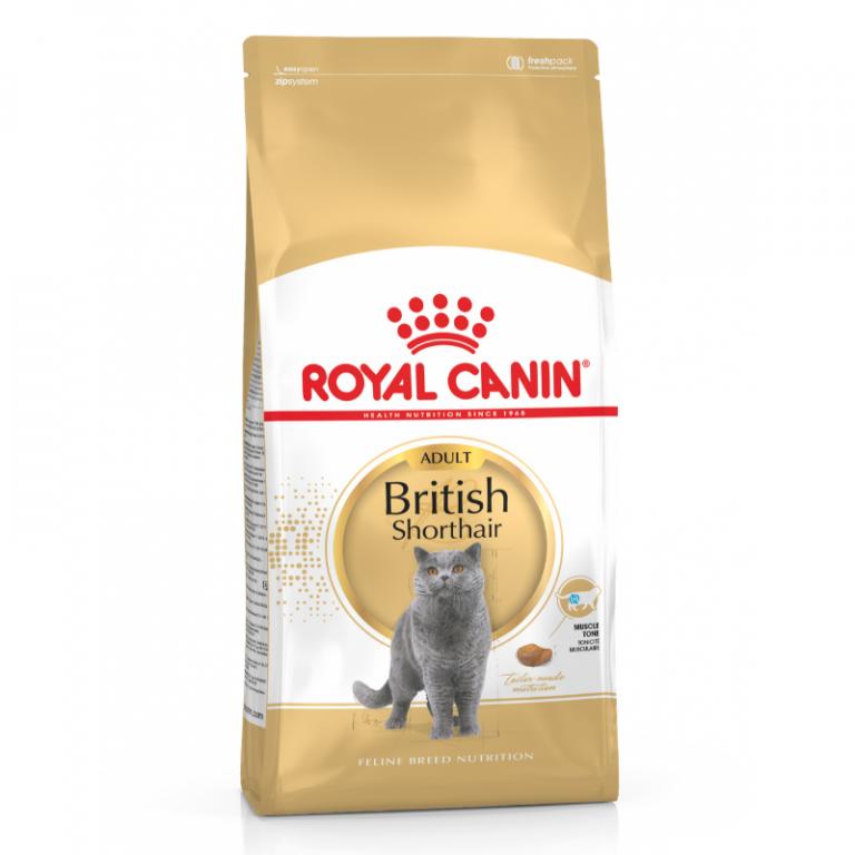 Royal Canin British Shorthair Adult Cat