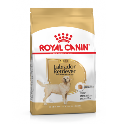 Royal Canin Labrador Retriever Adult Dog
