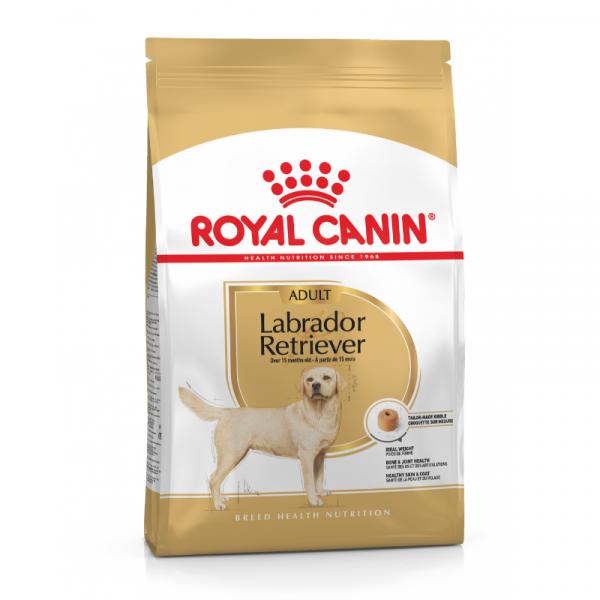 Royal Canin Labrador Retriever Adult Dog