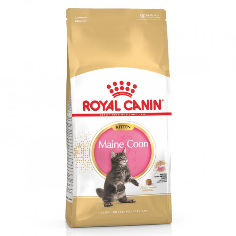 Royal Canin Maine Coone Kitten