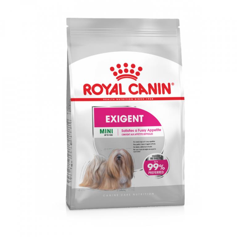 Royal canin mini exigent dog