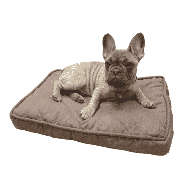 Rosewood Chocolate Tweed Mattress with dog 2