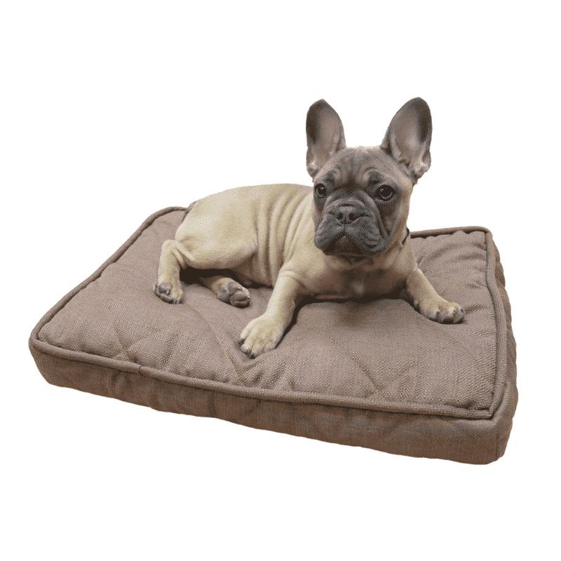 Rosewood Chocolate Tweed Mattress with dog 2