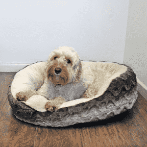 Rosewood Grey & Cream Snuggle Plush Oval with dog