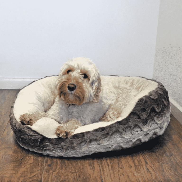 Rosewood Grey & Cream Snuggle Plush Oval with dog
