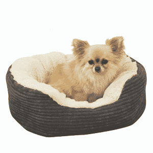 Rosewood Jumbo Cord plush Oval Bed with dog