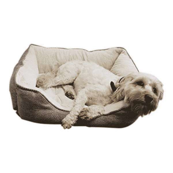 Rosewood Luxury Truffle Square Bed with dog 2
