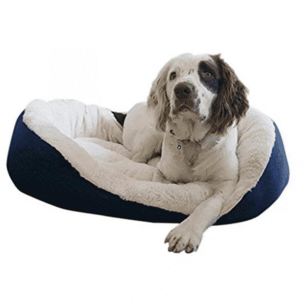 Rosewood Navy Cable Knit Oval Bed with dog