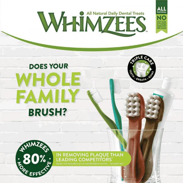 Whimzee toothbrush imfo
