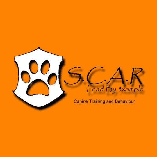 scar dog training