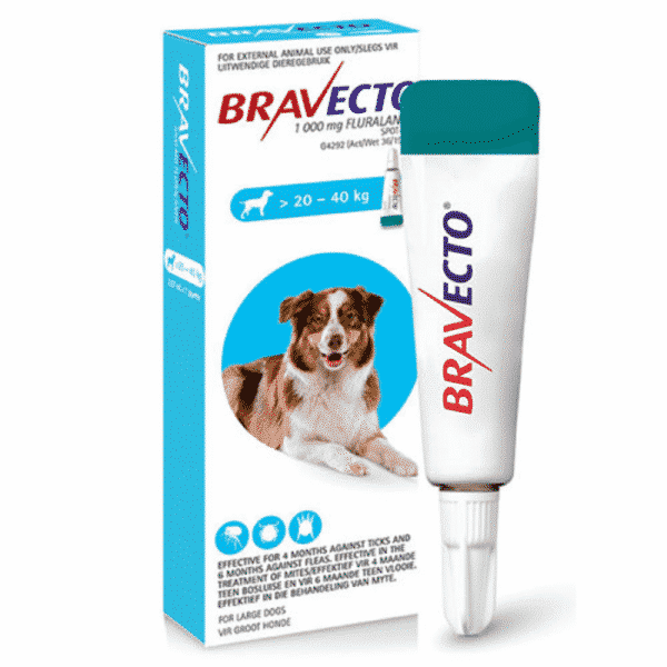 Bravecto Spot on for Dogs large