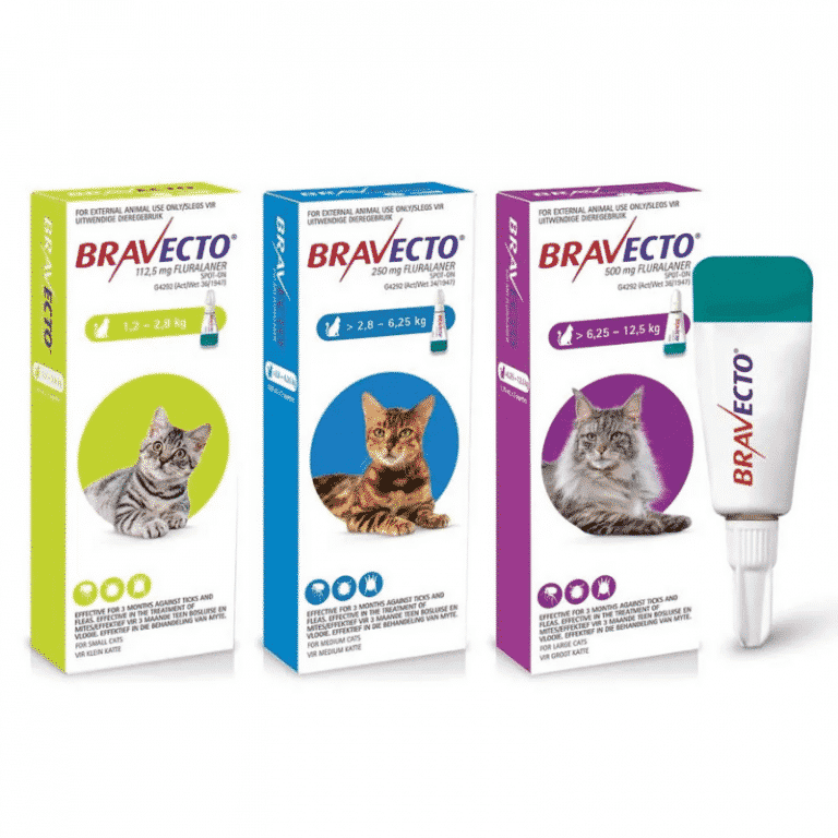 Bravecto Spot on for cats all packs