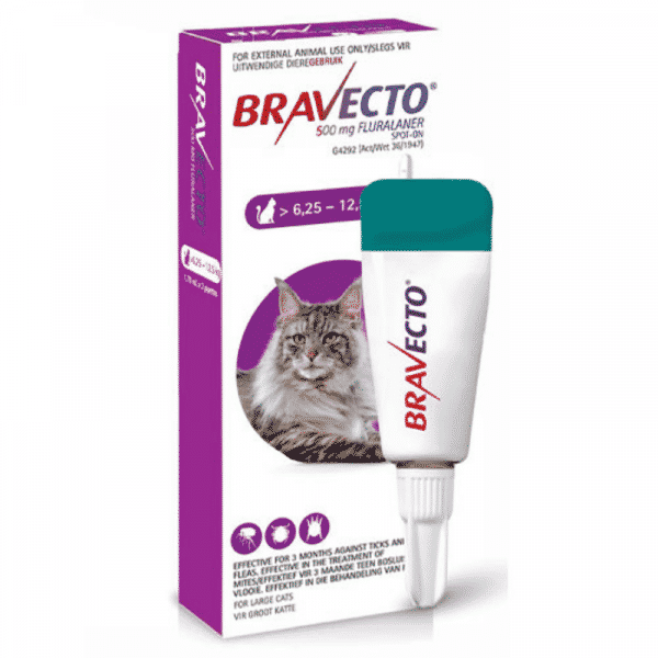 Bravecto spot on for cats large