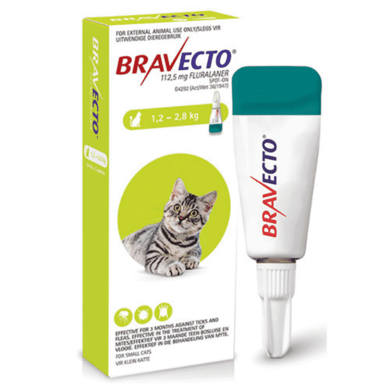 Bravecto spot on for cats small