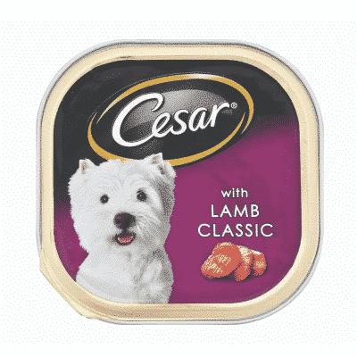 Cesar Lamb Classic