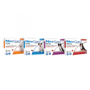 NexGard Chewable Tick & Flea Tablet for Dogs (3 Pack)