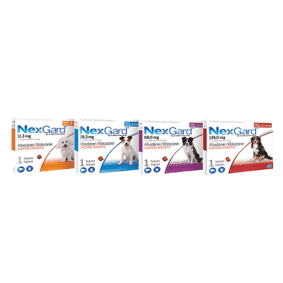 NexGard Chewable Tick & Flea Tablet for Dogs (Single Pack)