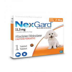 NexGard Chewable Tick & Flea Tablet for Dogs (Single Pack) xsmall