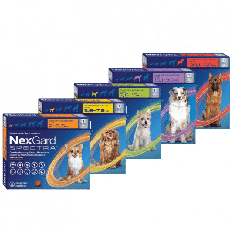 NexGard Spectra Chewable Mixed Parasite Tablets for Dogs (1 Pack)