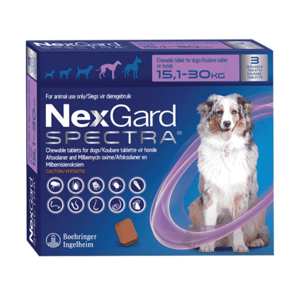 NexGard Spectra Chewable Mixed Parasite Tablets for Dogs (3 Pack) large