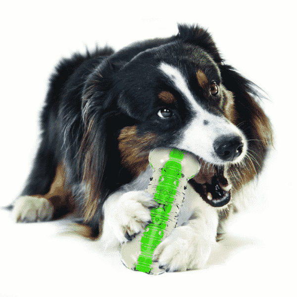 Petstages® Crunchcore™ dog chewing (2)