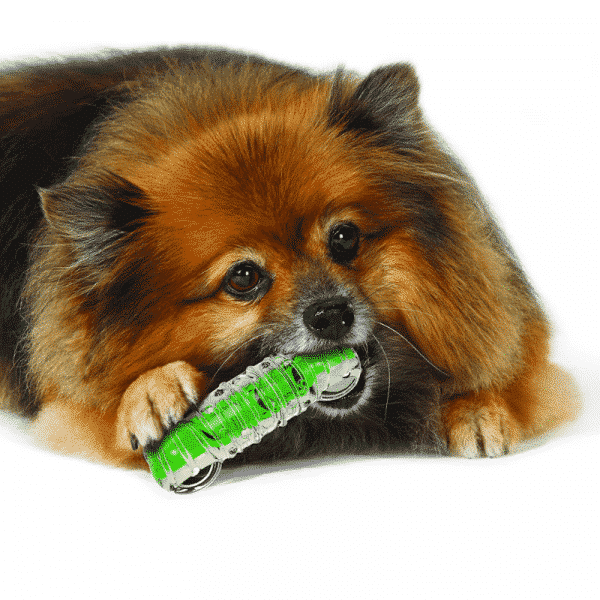Petstages® Crunchcore™ dog chewing
