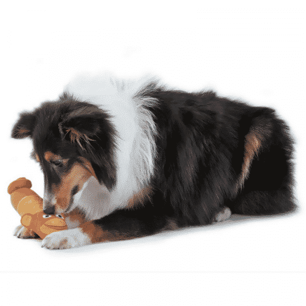 Petstages® Lil Squeak Monkey dog playing