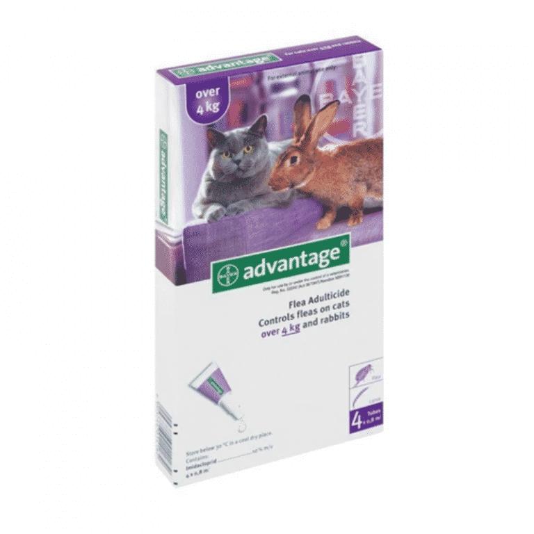 Advantage Cat Over 4kg Flea Treatment