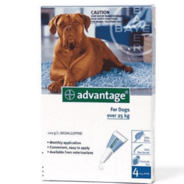 Advantage Dog Over 25kg Fleas & Lice Treatment