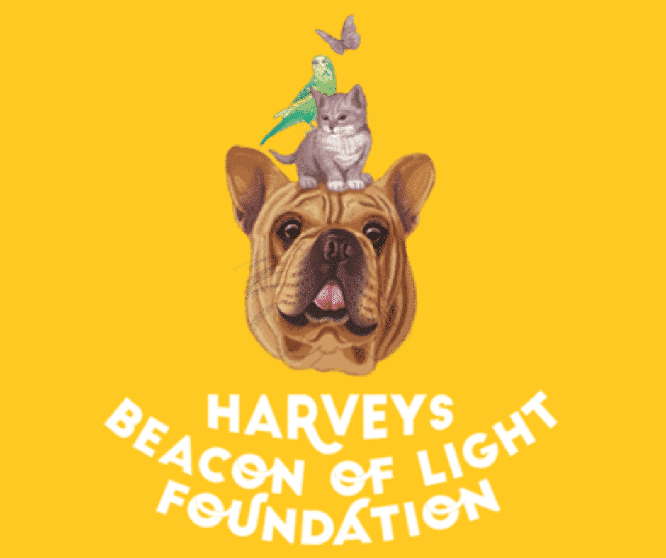 Support Harveys Beacon of Light