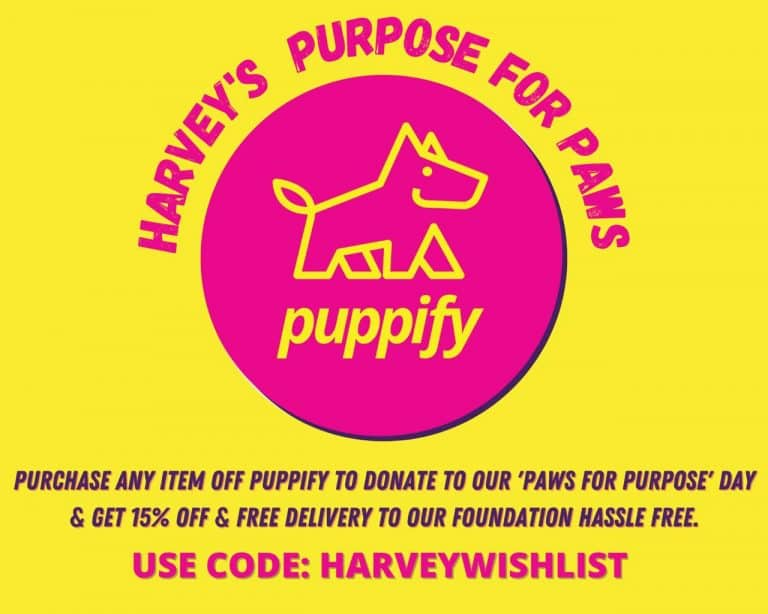 Harveys puppify partnership
