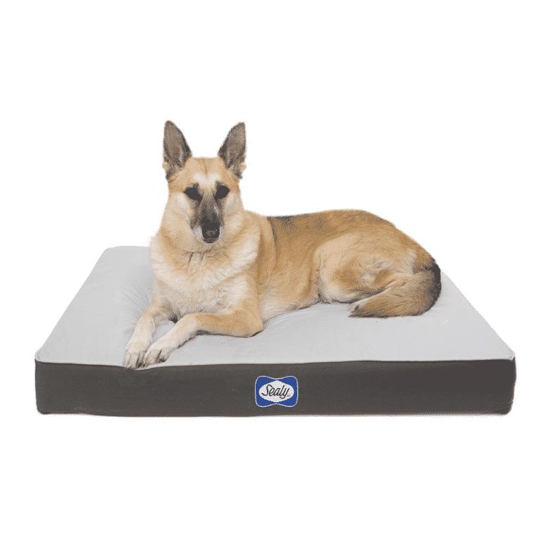 Sealy Defender DOG BED grey